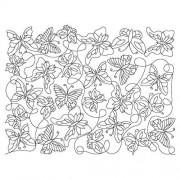 Butterfly Pano 06 Pattern