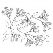 Chicory Pano 01 Pattern