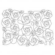 Roses Pano 5